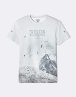 T-shirt Game of Thrones - LMEWINTER_GREY - Image à plat - Celio France